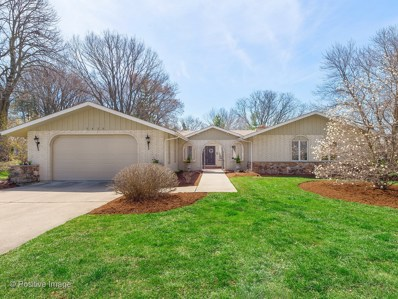 6426 Waubansee Drive, Indian Head Park, IL 60525 - MLS#: 09931530