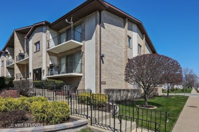 9800 Nashville Avenue UNIT 3, Chicago Ridge, IL 60415 - MLS#: 09931643