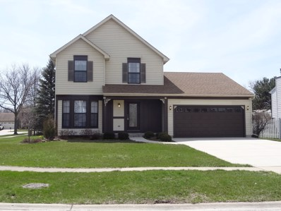 707 Bluejay Circle, Elk Grove Village, IL 60007 - #: 09932774