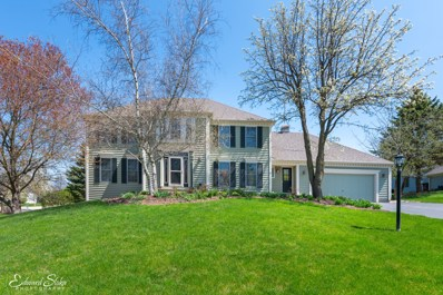 705 Tomahawk Lane, Crystal Lake, IL 60012 - #: 09933063
