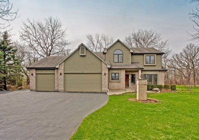 7209 Edgewood Court, Spring Grove, IL 60081 - #: 09933396
