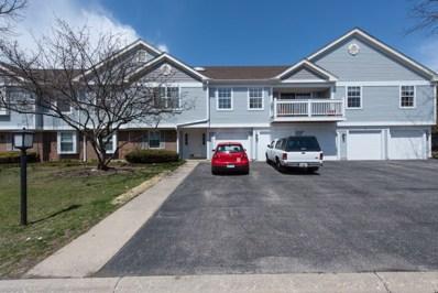 1229 Ballantrae Place UNIT E, Mundelein, IL 60060 - MLS#: 09933661