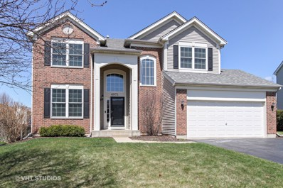 4971 Thistle Lane, Lake In The Hills, IL 60156 - MLS#: 09934628