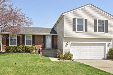 1100 Thompson Boulevard, Buffalo Grove, IL 60089 - MLS#: 09935512