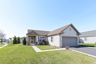 13899 Shady Lane, Huntley, IL 60142 - MLS#: 09935834