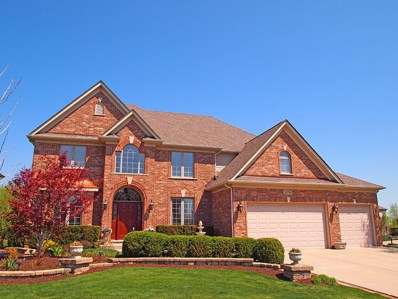 25702 Skyline Court NORTH, Plainfield, IL 60585 - MLS#: 09936132