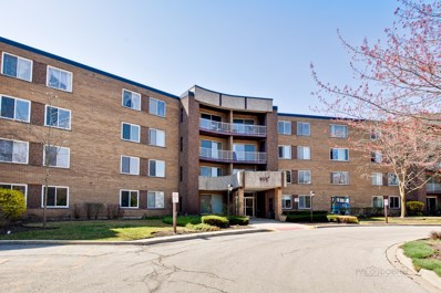 909 E Kenilworth Avenue UNIT 203, Palatine, IL 60074 - MLS#: 09936157