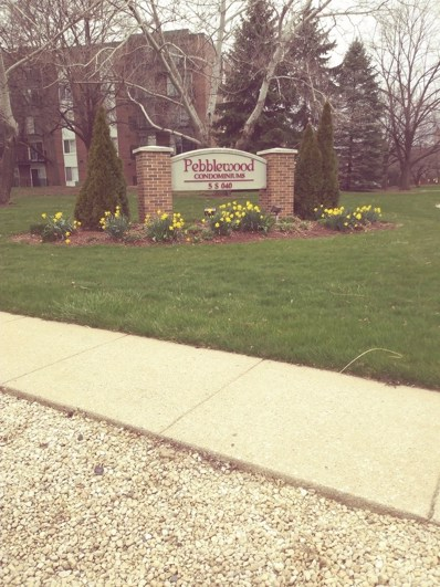 5S040  PEBBLEWOOD Lane UNIT W107, Naperville, IL 60563 - MLS#: 09936261