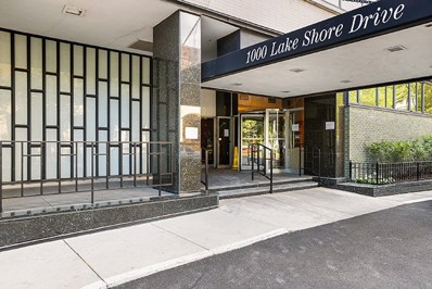 1000 N Lake Shore Drive UNIT 1702, Chicago, IL 60611 - #: 09936405