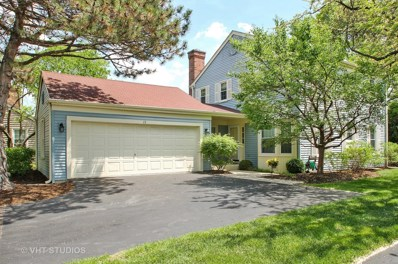 13 The Court Of North Corner Court, Northbrook, IL 60062 - #: 09937074