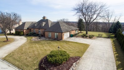 8021 Salvatori Court, Orland Park, IL 60462 - MLS#: 09937421
