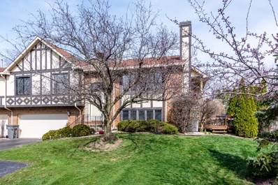 9215 Windsor Parkway, Tinley Park, IL 60487 - MLS#: 09937459