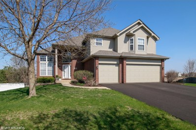 24355 Golden Sunset Drive, Plainfield, IL 60585 - MLS#: 09937471