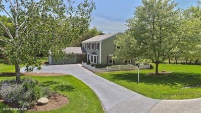 19 Rivers Bend Drive, Lake Barrington, IL 60010 - MLS#: 09938426