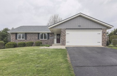 1875 S Trainer Road, Rockford, IL 61108 - #: 09938902