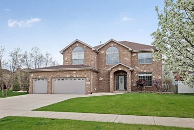 16262 Burch Drive, Lockport, IL 60441 - MLS#: 09939641