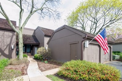 256 N Thornhill Lane UNIT D, Lake Barrington, IL 60010 - MLS#: 09940289