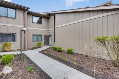 2s409  EMERALD GREEN Drive UNIT H, Warrenville, IL 60555 - #: 09941209