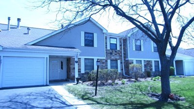 217 ARROWWOOD Court UNIT B2, Schaumburg, IL 60193 - #: 09941712