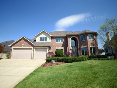 21167 Sage Brush Lane, Mokena, IL 60448 - #: 09943027