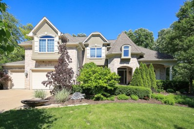 8981 Orchard Road, Willow Springs, IL 60480 - MLS#: 09943351