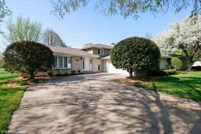 1213 Shagbark Road, New Lenox, IL 60451 - MLS#: 09943617