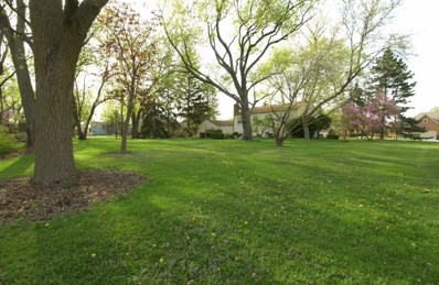 27W111  Knoch Knolls Road, Naperville, IL 60565 - MLS#: 09943862