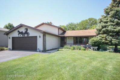 19546 S Skye Drive, Frankfort, IL 60423 - #: 09944417