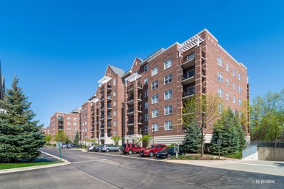 390 W Mahogany Court UNIT 312, Palatine, IL 60067 - MLS#: 09945249