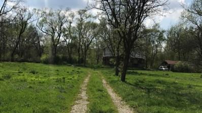 21260 S River Road, Frankfort, IL 60423 - #: 09945256