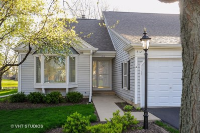 812 Willow Hills Lane, Prospect Heights, IL 60070 - MLS#: 09945688