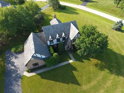 22413 N Hopewell Court, Kildeer, IL 60047 - MLS#: 09945866