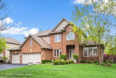 12714 Hawks Bill Lane, Plainfield, IL 60585 - #: 09946820