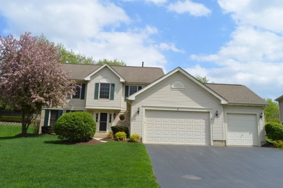 5 White Chapel Court, Algonquin, IL 60102 - #: 09947060
