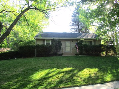 207 Center Place, Peru, IL 61354 - MLS#: 09947272