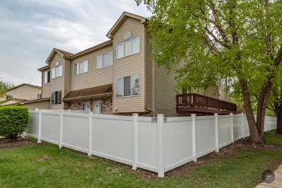 291 Park Ridge Lane UNIT C, Aurora, IL 60504 - MLS#: 09947899