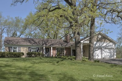 164 Hawthorne Way, Trout Valley, IL 60013 - #: 09948003