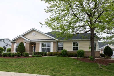 21254 W Crimson Court, Plainfield, IL 60544 - MLS#: 09950140