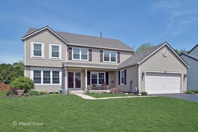 1178 Saddle Ridge Trl, Cary, IL 60013 - #: 09950245