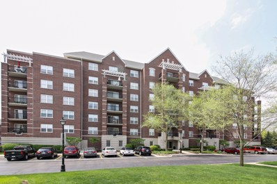 470 W Mahogany Court UNIT 301, Palatine, IL 60067 - MLS#: 09950551