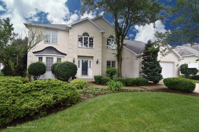 4656 Mather Court, Naperville, IL 60564 - #: 09951414