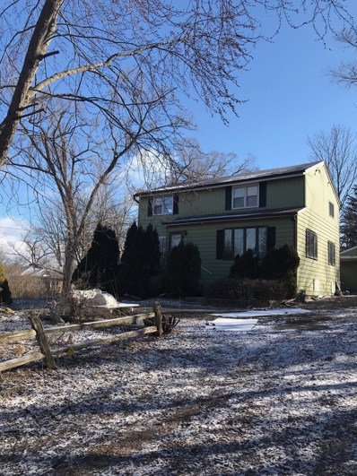 55 S Clyde Avenue, Palatine, IL 60067 - #: 09951547