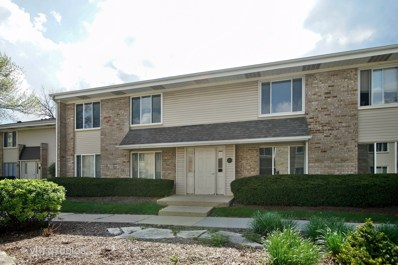 1460 VISTA WALK UNIT B, Hoffman Estates, IL 60169 - #: 09951581