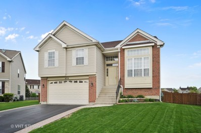 6716 Pine Lane, Carpentersville, IL 60110 - MLS#: 09952795
