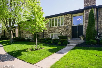 15325 Aubrieta Lane UNIT 65, Orland Park, IL 60462 - MLS#: 09953115