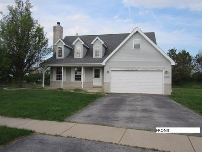 607 Merganser Lane, Peotone, IL 60468 - MLS#: 09953248