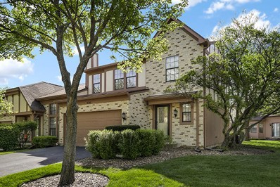 4541 Topaz Drive, Hoffman Estates, IL 60192 - #: 09953419