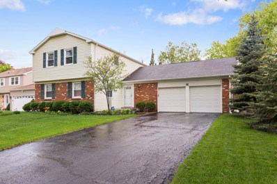 30 Timber Hill Road, Buffalo Grove, IL 60089 - #: 09953819
