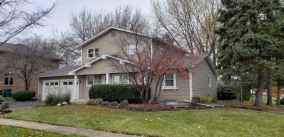 1067 Carpenter Court, Elk Grove Village, IL 60007 - #: 09954052