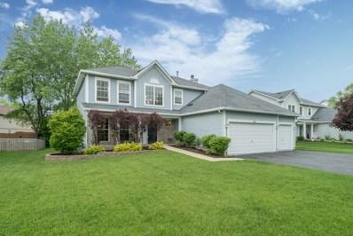 169 Christine Way, Bolingbrook, IL 60440 - #: 09954798